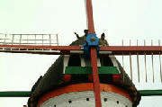 De molen in Dreischor
