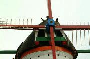 De molen in Dreischor